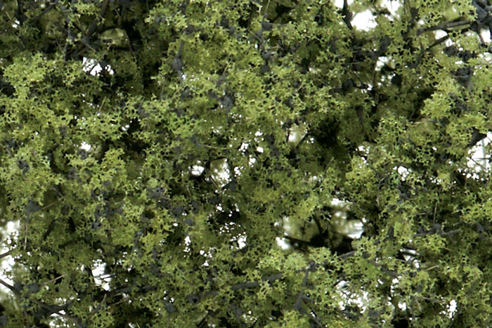 F1132 Fine-Leaf Foliage™ Light Green